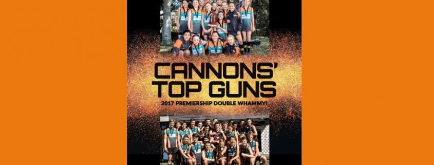 2017 Cannons yearbook cover